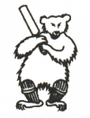 Bear Flat Cricket Club